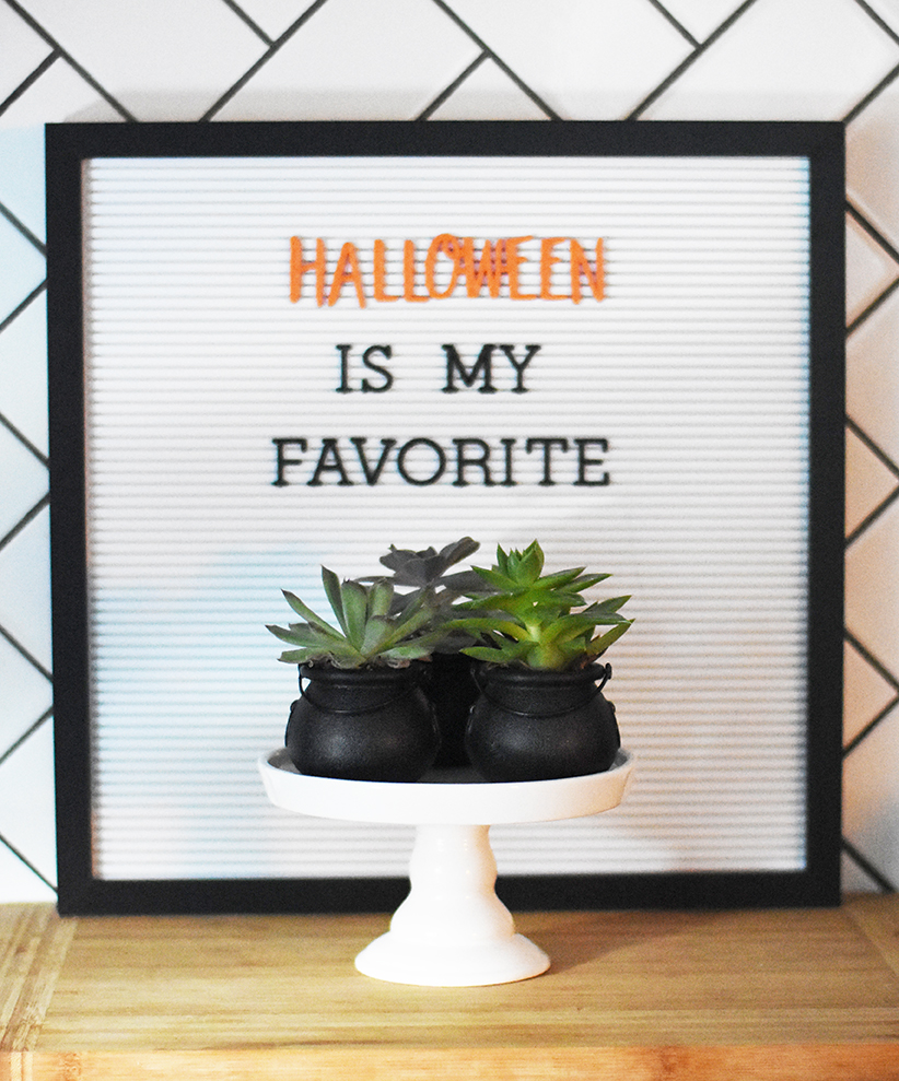 Halloween Succulents in Mini Cauldrons - Pineapple Paper Co.