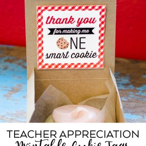 Teacher Appreciation Tags – Free Printables