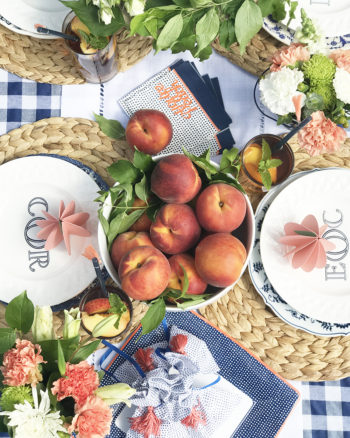 Peach and Indigo Summer Party Ideas with Cricut and Martha Stewart